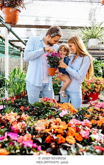 Happy mother, father and daughter buying flowers in a garden center