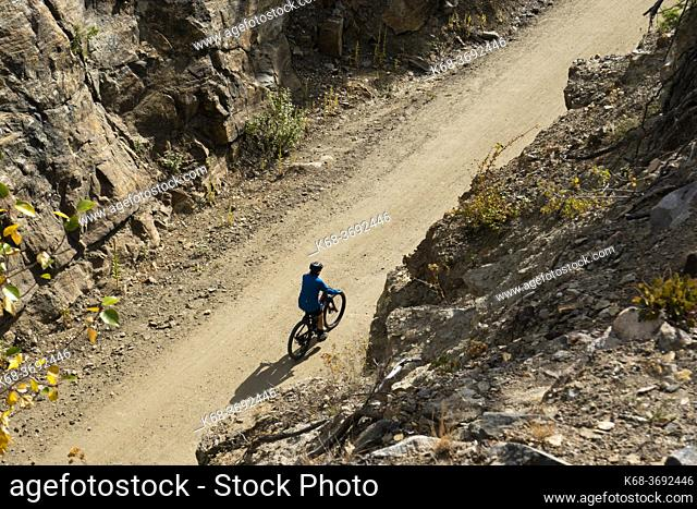 A cyclist rides in the Myra Canyon, Kettle Valley Rail Trail, Okanagan, British Columbia, Canada
