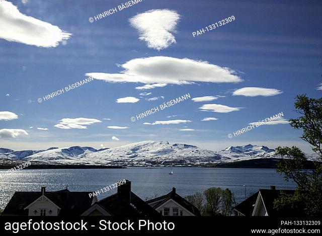 spring in northern Norway, june 2020 | usage worldwide. - Tromsö/Troms/Norway