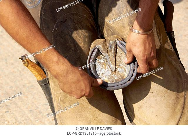 England, Kent, Paddock Wood. A farrier fitting a shoe to a hoof