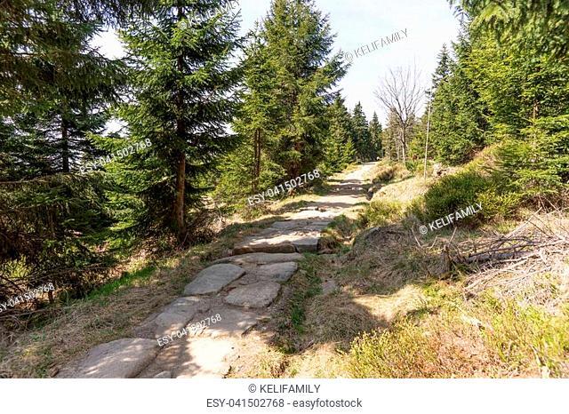 Rocky path in the National park Krkonose Giant mountains, Czech Republic