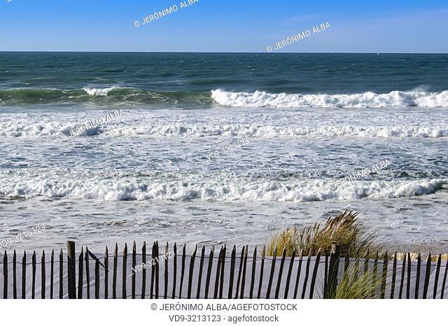 Beach Grand Crohot. Lège-Cap-Ferret, Gironde. Aquitaine region. France Europe