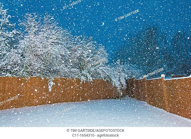 winter snow, biggin hill, westerham, kent, england,uk,europe