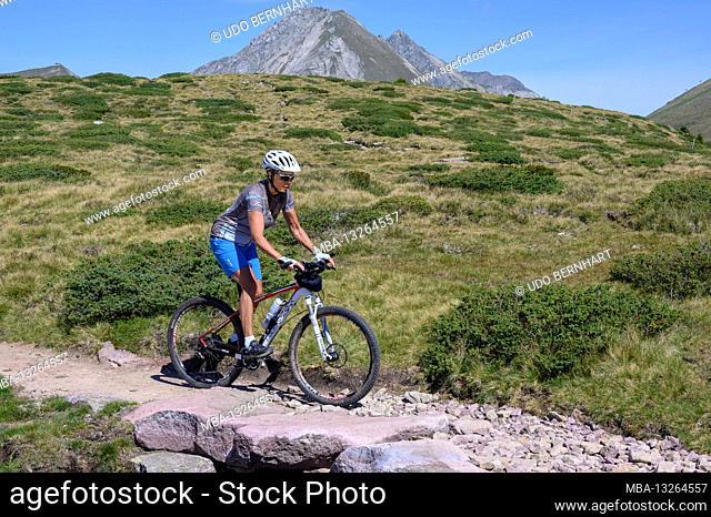 Italy, Trentino-Südtirol / Alto Adige, South Tyrol, Sarntal Alps, Tschoegglberg, high plateau, Verano, Meran 2000 Bike Region Trail Tolerance Singletrail MTB...
