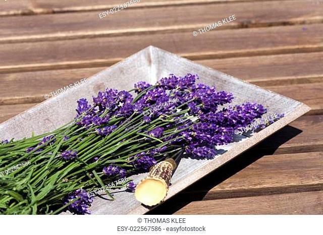 Lavendel in einer Holzschale