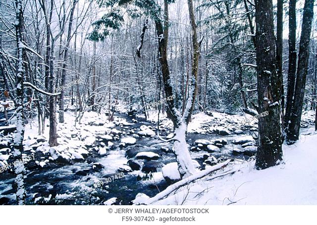 Winter snow. Little Pigeon River. Great Smoky Mountains National Park. Tennessee. USA