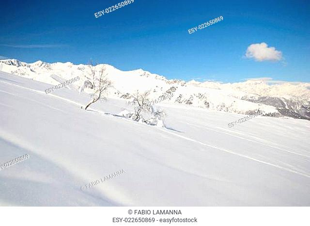 Off piste snowy slope in majestic high mountain frozen scenery and infinite view, winter in the italian Alps