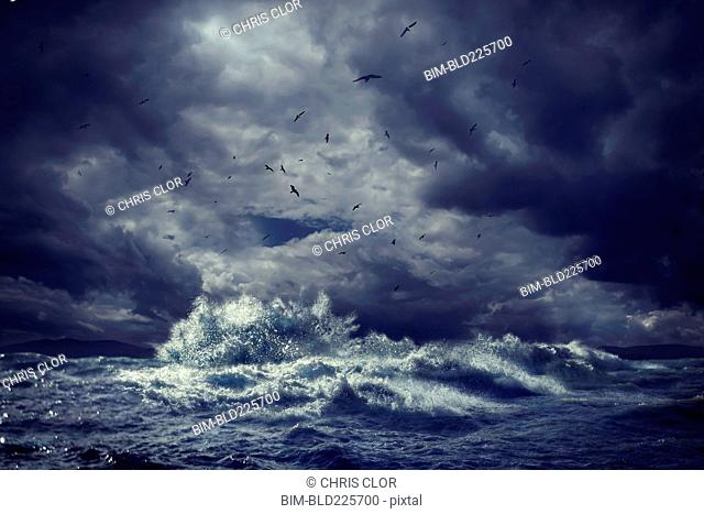 Birds flying over rough ocean waves
