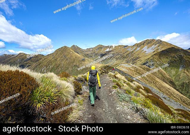 Hiker on Kepler Track, Great Walk, view of Kepler Mountains, Fiordland National Park, Southland, New Zealand, Oceania