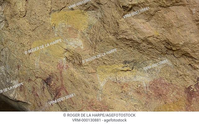 Bushman rock art in Main Caves. Giant's Castle Game Reserve. Ukhlahlamba Drakensberg Park. KwaZulu Natal. South Africa