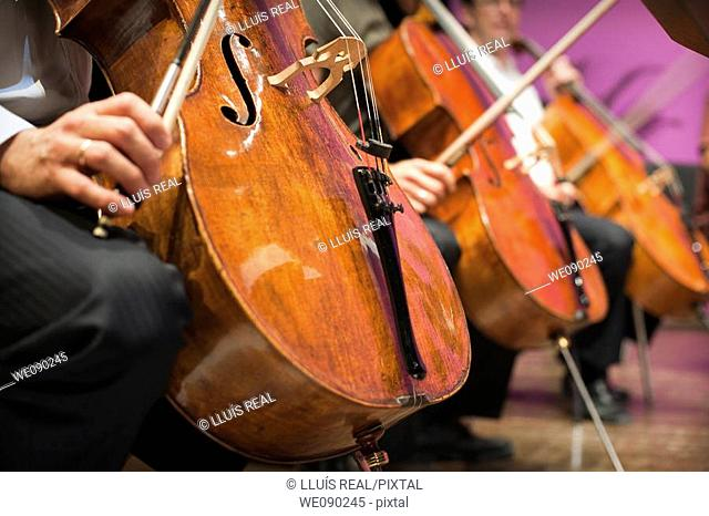 violonchelos en un concierto, grupo de cuerda de la orquesta, primer plano, cuerdas, arco, mano, cello at a concert, group stringed, foreground, cords, bow