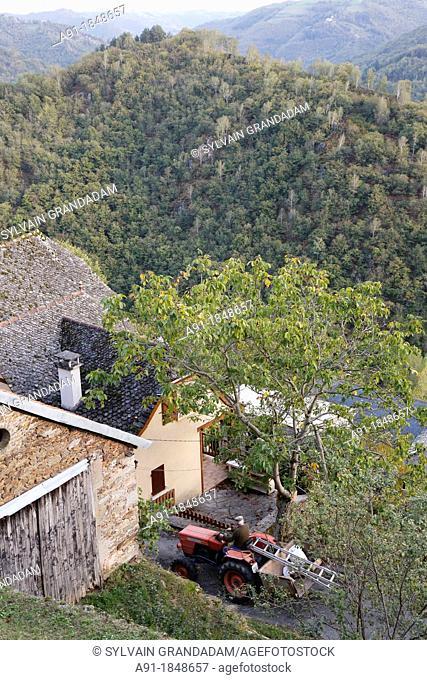 France, Auvergne, Cantal 15, natural regional park of the Auvergne volcanos, Cassaniouze commune rural district, picturesque village of La Vinzelle overlooking...