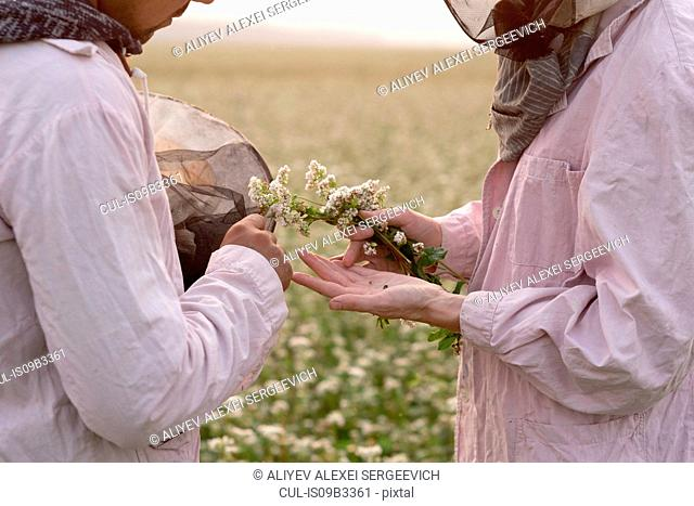 Cropped shot of male and female beekeepers inspecting plant in flower field, Ural, Russia