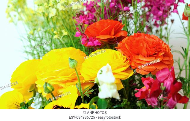 buttercup and linaria flowers for background uses