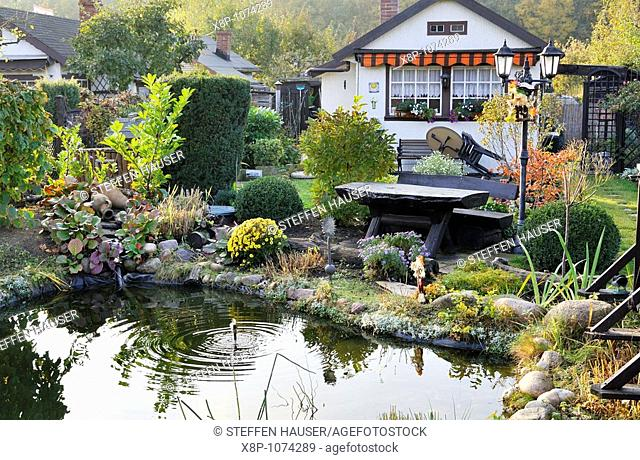 Autumnal allotment garden with garden pond