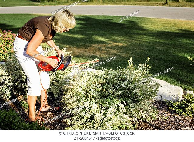 Woman using an electric hedge trimmer to shape bushes