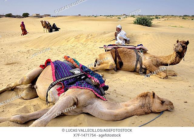 Scene in Sam dunes, Desert National Park in the Great Thar Desert, near Jaisalmer, Rajasthan, India