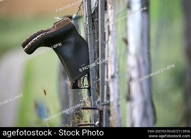 03 July 2020, Baden-Wuerttemberg, Unlingen: Rubber boots hang upside down to dry on a garden fence. Photo: Thomas Warnack/dpa