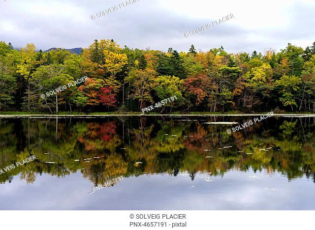 Five Lakes, Shiretoko national park, Unesco worldwide heritage, Hokkaido prefecture, Japan