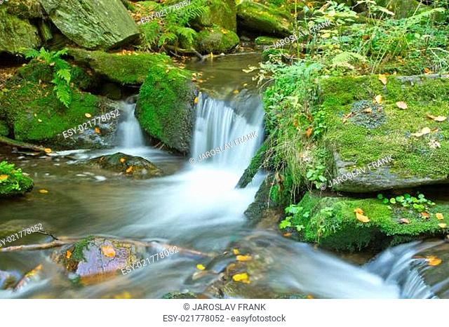 Flowing stream in the autumn forest