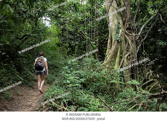 Woman hiking on trail in forest, Yelapa, Jalisco, Mexico