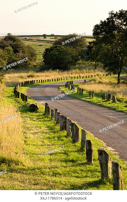 country park track with wooding edging posts to prevent verge parking