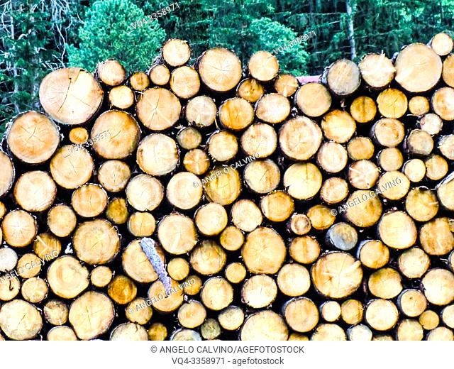 Close-up of stacked logs piled up on each other along the main street in San Giovanni in Valle Aurina, Sankt Johann in Ahrntal, South Tirol, Alto Adige, Italy