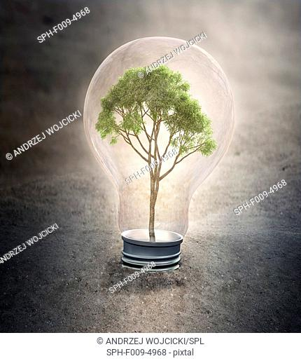 Tree growing inside a light bulb, computer artwork