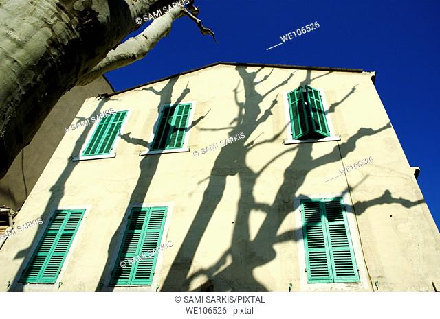 Plane tree Platanus casting shadows on a quaint building on Boulevard Eugene Pierre, Marseille, France