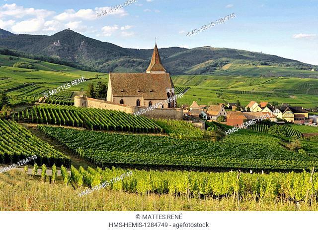 France, Haut Rhin, Alsace Wine Route, Hunawihr, labelled Les Plus Beaux Villages de France (The Most Beautiful Villages of France), St Hune church