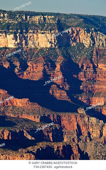 View of the North Rim of the Grand Canyon, Grand Canyon National Park, Arizona