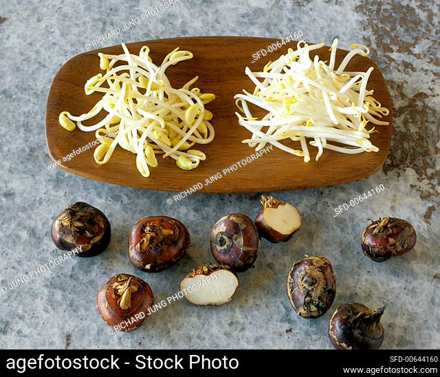 Soya bean sprouts, mung bean sprouts and water chestnuts