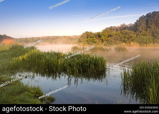 Summer. Calm river shore. Riverside Grass. Morning fog