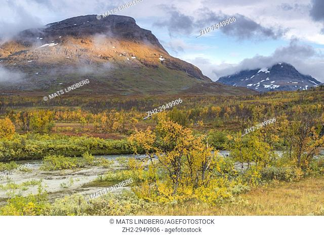 Landscape in autumn season with mountains with clouds hanging over them, birch trees in autumn colors, Kiruna county, Swedish Lapland, Sweden