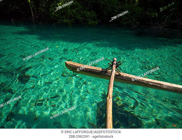 Dugout boat on a green water river, Sanma Province, Espiritu Santo, Vanuatu