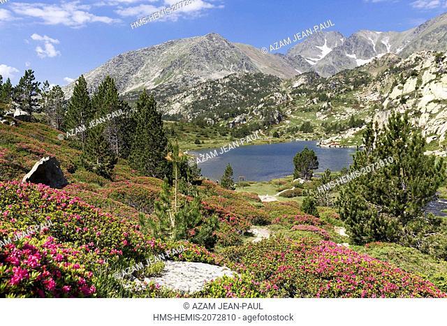 France, Pyrenees Orientales, Les Angles, Bailleul lake and Carlit peak