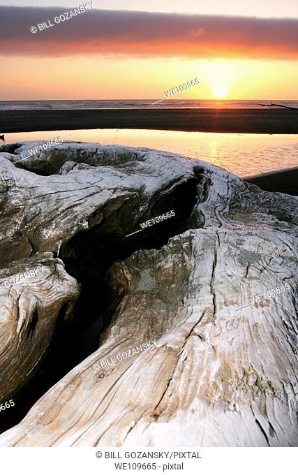 Sunset on Gold Bluffs Beach - Prairie Creek Redwoods State Park - near Crescent City, California