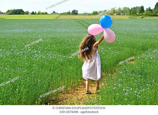 little girl dressed in white playing with balloons in a flax field flowering, Centre-Val de Loire region, France, Europe