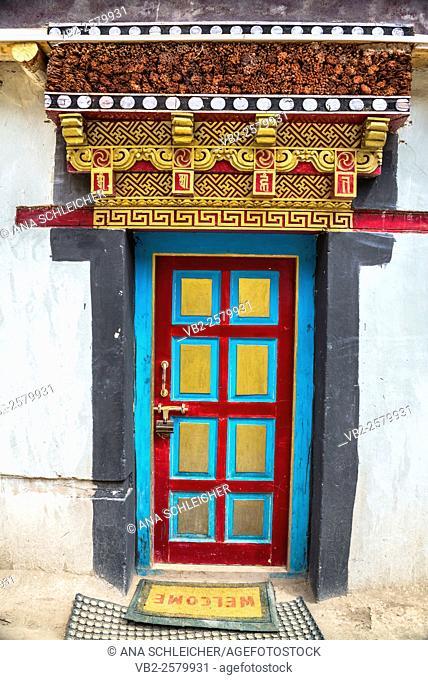 Decorated ancient door. Hemis gompa. Indus valley, Ladakh (india)