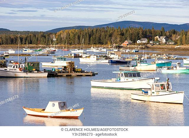 Lobster boats sit at anchor in Bass Harbor in Tremont, Maine