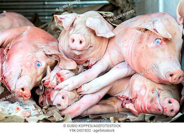 New York, USA. Stack of recently slaughtered pigs and hogs in the back of a delivery truck on 8th Avenue, Brooklyn