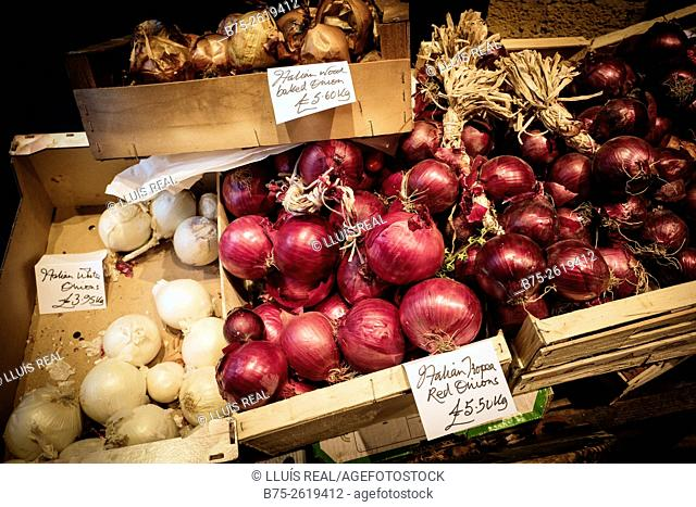 Diferent tipes of Italian organic onions. Red, White and Wood Baked in wooden boxes in a market. London, England, UK, europe