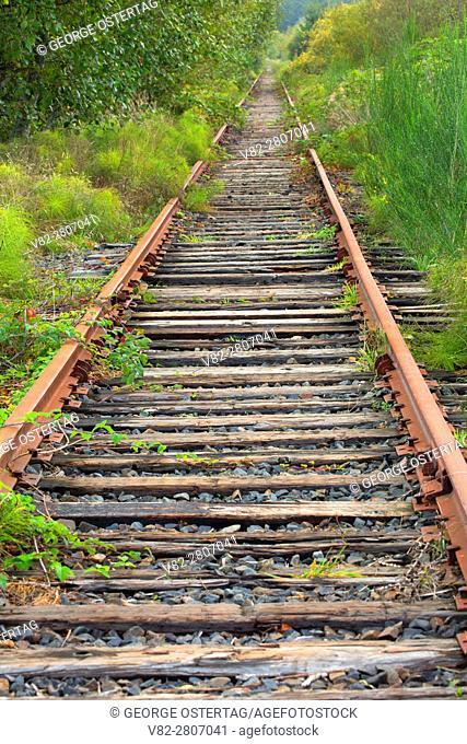Abandoned railroad tracks, Astoria Riverwalk, Astoria, Oregon