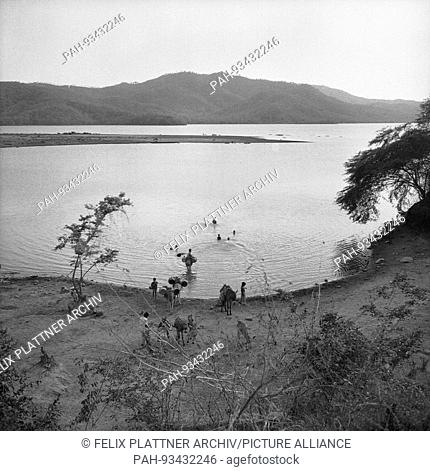 With bathing children and mowing with barrels for water transport, lake at Barranquilla, Colombia 1958.   usage worldwide
