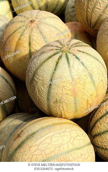 Ripe melons at an outdoor market