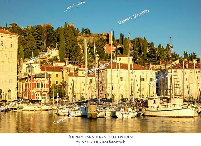 Evening sunlight on Marina, buildings and old town wall, Piran, Primorska, Slovenia