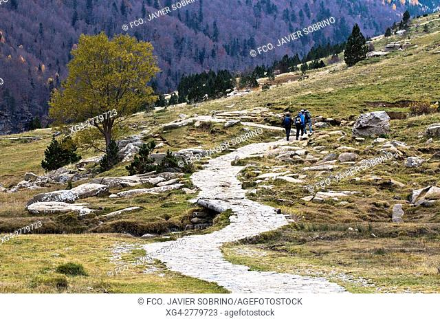 Circo de Soaso. Valle de Ordesa. Parque Nacional de Ordesa y Monte Perdido. Torla. Sobrarbe. Huesca. Pirineo Aragones. Aragon. España. Europa