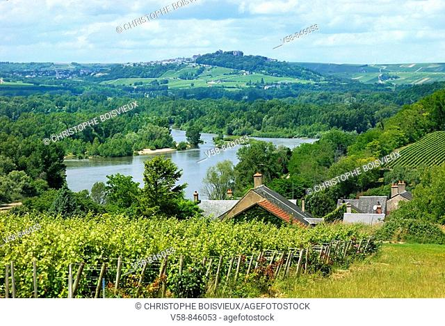 The Loire river, Pouilly Fume vineyard and Sancerre hill, Pouilly sur Loire region, Nievre, France