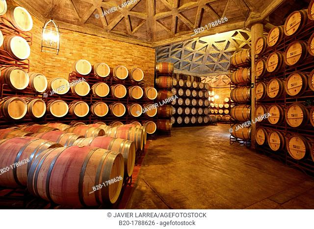Wine cellar, Aging wine storage in barrels , Olarra winery, Rioja, Logroño, Spain