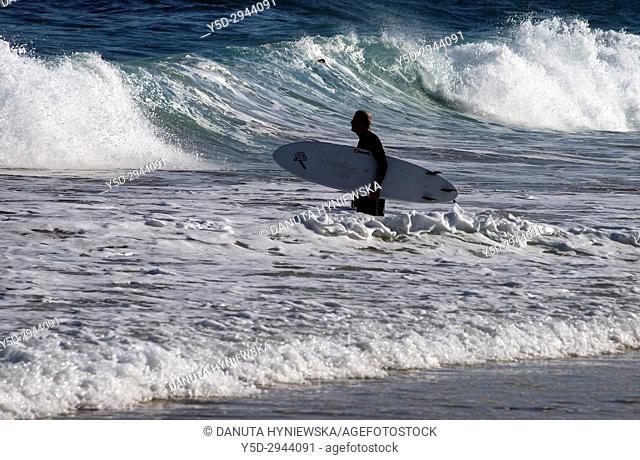 single surfer entering Atlantic Ocean, Mareta beach, Sagres, Algarve, Portugal